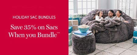 Save 35% on Sacs When You Bundle from Lovesac
