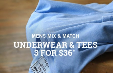 Underwear & Tees 3 for $36