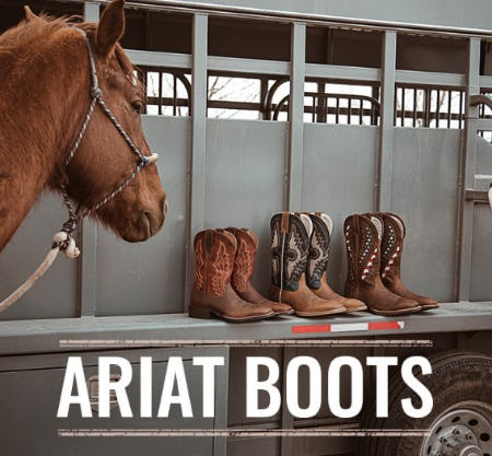 The Ariat Boots from Boot Barn Western And Work Wear