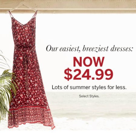 Summer-Perfect Dresses Now $24.99 from Dressbarn