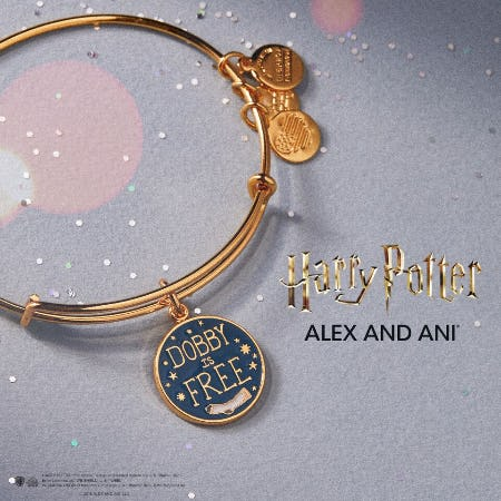HARRY POTTER™ Bangle of the Month from ALEX AND ANI
