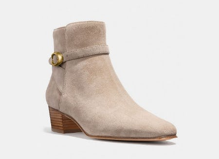 Chrystie Bootie from Coach