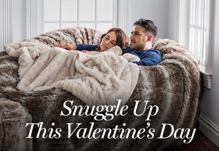 The Perfect Valentine's Day Gift from Lovesac