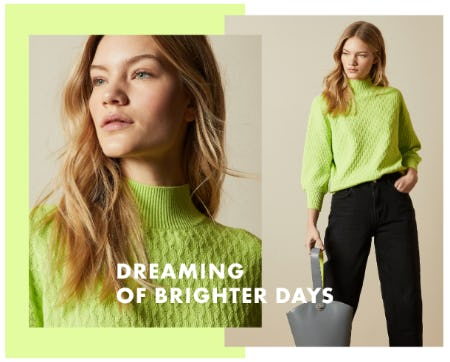 Dreaming of Something New from Ted Baker London