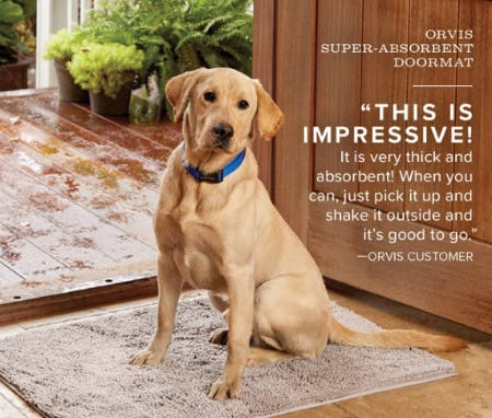 Orvis Super-Absorbent Doormat from Orvis