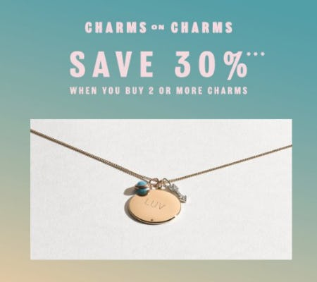Save 30% When You Buy 2 or More Charms