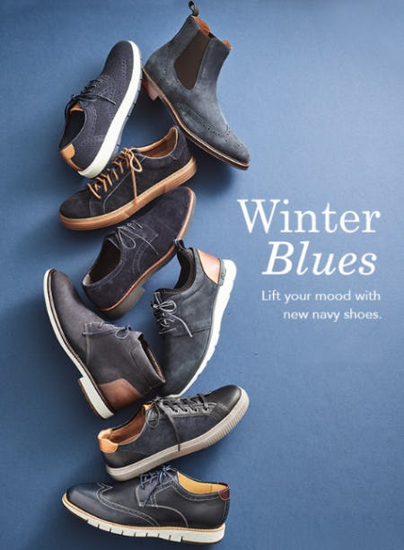 The Winter Blues from JOHNSTON & MURPHY