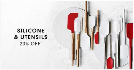 20% Off Silicone & Utensils from Williams-Sonoma
