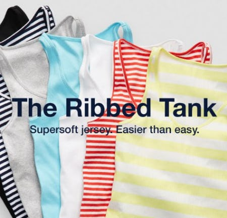 Meet Your New Favorite Tank