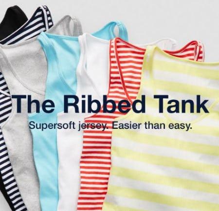 Meet Your New Favorite Tank