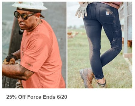 25% Off Force from Carhartt