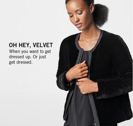 Shop the Velvet Quilted Jacket