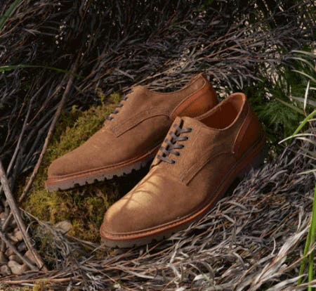 Recraftable Discovery Collection from Allen Edmonds