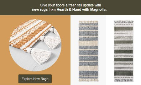 Explore New Rugs