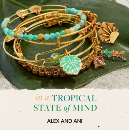 Alex and Ani Summer 2021
