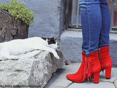 Women's bright red fringe suede booties next to a sleeping cat.