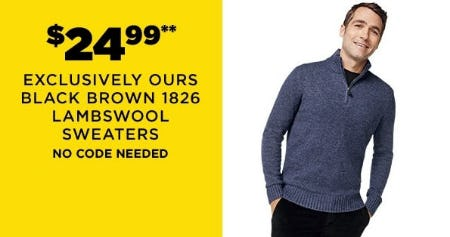 $24.99 Exclusively Ours Black Brown 1826 Lampswool Sweaters from Lord & Taylor