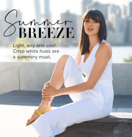 Summer Breeze from New York & Company