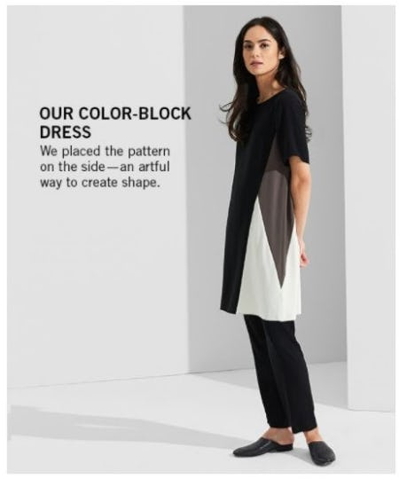 Our Color-Block Dress from Eileen Fisher