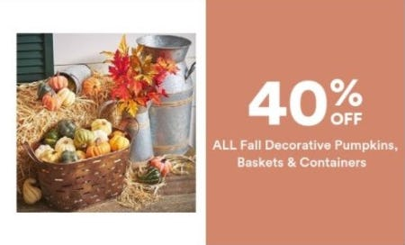 40% Off All Decorative Pumpkins, Baskets & Containers from Michaels