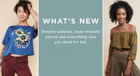 Shop New Arrivals from Earthbound Trading Company