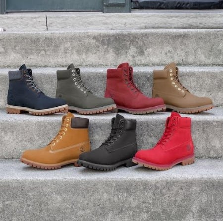 Timberland 6 from Journeys