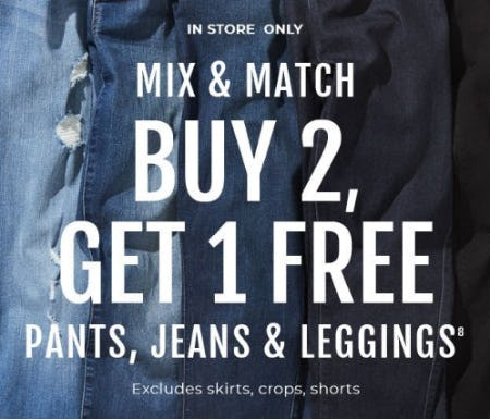 Buy 2, Get 1 Free Pants, Jeans & Leggings from Torrid