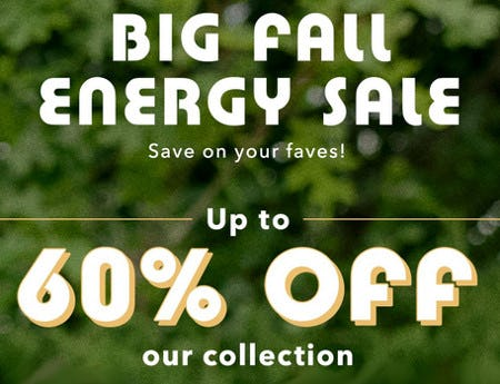 Up to 60% Off Our Collection from Aerie