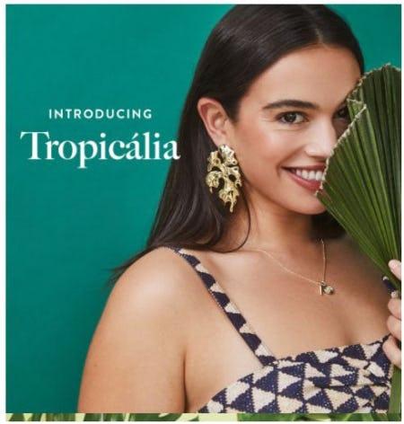 New Tropicália