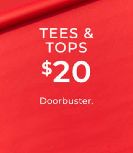 $20 Tees and Tops from Lane Bryant