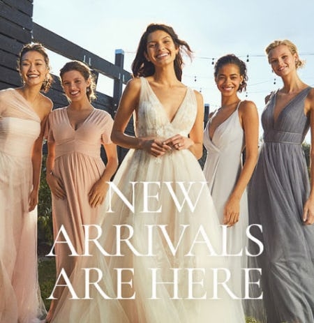 New Arrivals are Here from Anthropologie