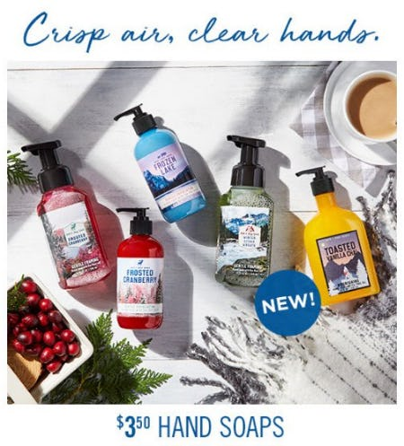 $3.50 Hand Soaps from Bath & Body Works