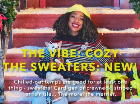 The Sweaters: New from American Eagle