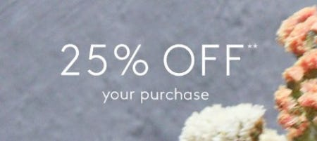 25% Off Your Purchase from Club Monaco
