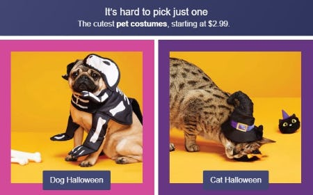 Pet Costumes Starting at $2.99 from Target