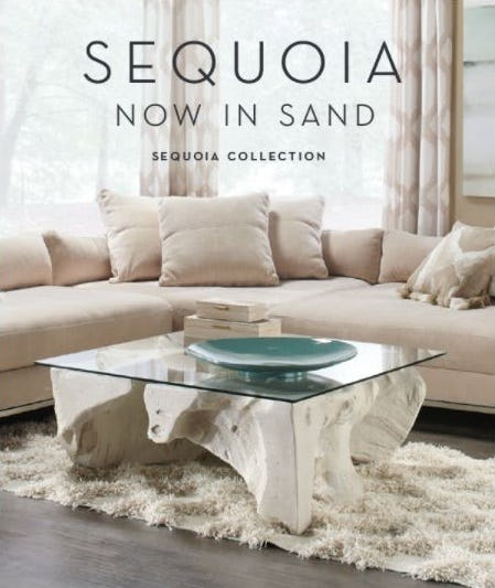 New Collection: Sequoia Sand from Z Gallerie