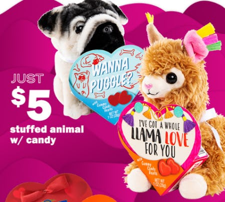Just $5 Stuffed Animal with Candy