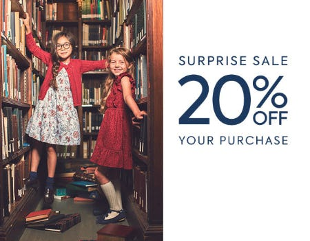 20% Off Surprise Sale from Janie and Jack