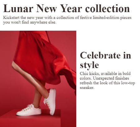 Lunar New Year Collection from ALDO Shoes