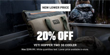 20% Off Yeti Hopper Two 30 Cooler from Dick's Sporting Goods