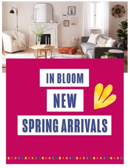 New Spring Arrivals from Cost Plus World Market