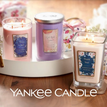 ALL Large Candles – 2 for $40 from Yankee Candle