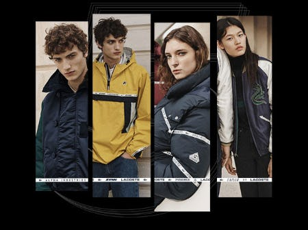Our Four Iconic Coats for Winter