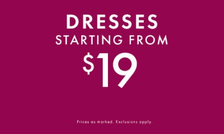 Dresses Starting from $19