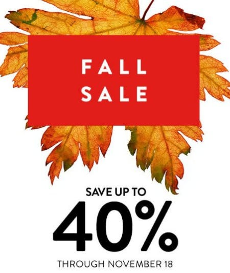 Fall Sale up to 40% Off