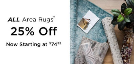 25% Off All Area Rugs from Kirkland's Home