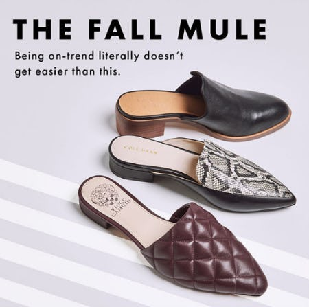 The Fall Mule from DSW Shoes