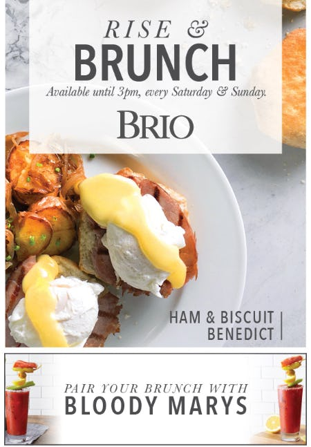 Brunch at BRIO!