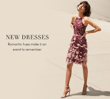 New Dresses from Neiman Marcus
