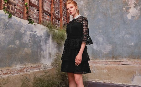Ted's Ultimate LBD Edit from Ted Baker London